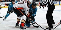 Anaheim Ducks vs Sharks Thumbnail 3.jpg
