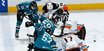 Barracuda vs. Gulls Thumbnail.jpg